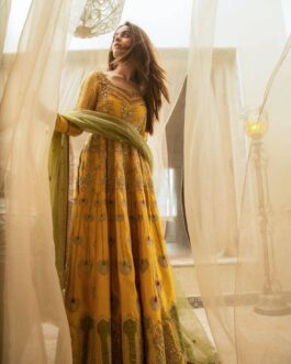 Beautiful Heavy Taffeta Silk With Embroidery Full Work In Front And Soft Net With Lace Border Dupatta