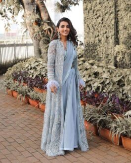 Beautiful Georgette Saree With Pleat Border Work Taffeta Silk Blouse With Thread And Zari Work With Net Coti